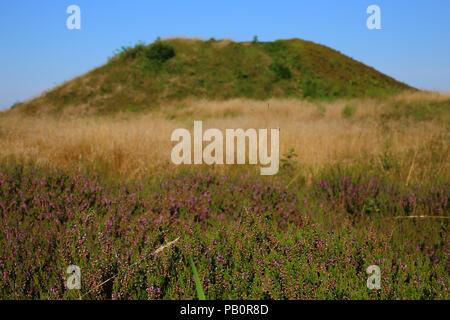 Bronze age burial mound (Firehøje) near Vejle, Denmark - Stock Image