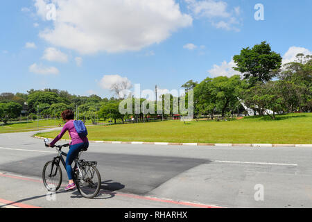 Woman riding a bicycle in the campus of the Sao Paulo university. Sao Paulo . Brazil. South America - Stock Image