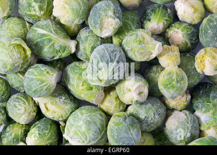Picture of a bunch of frozen sprouts - Stock Image