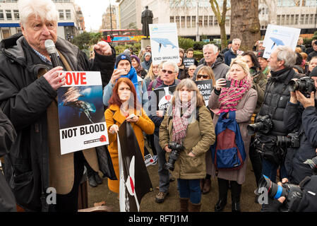London, UK. 26th January 2019. London protest against the intended resumption of whaling by Japan.The Japanese government recently backed out of an international agreement banning commercial whaling. Campaigners rally at Cavendish Square for the march to the Japanese Embassy. Stanley Johnson, Boris Johnsons father, addressing the crowd. Credit: Stephen Bell/Alamy Live News. - Stock Image