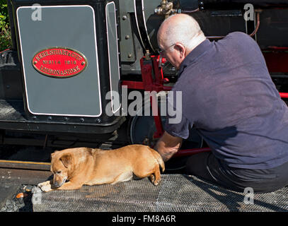 railway enthusiast in Devil's Bridge North Wales with his dog. - Stock Image