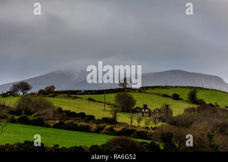 Ardara, County Donegal, Ireland. 2nd January 2019. A ruined cottage lies forlorn in the landscape on a cold, overcast day. Credit: Richard Wayman/Alamy Live News - Stock Image