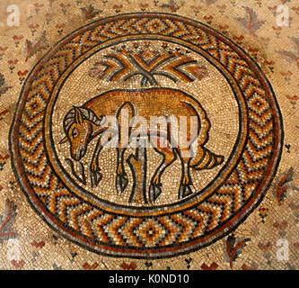 Mosaic in Madaba city,Jordan - Stock Image