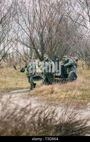 Gomel, Belarus - November 26, 2017: Reconstructors in the German form of the Wehrmacht pull the German gun Pak 36 to the position. Reconstruction of t - Stock Image