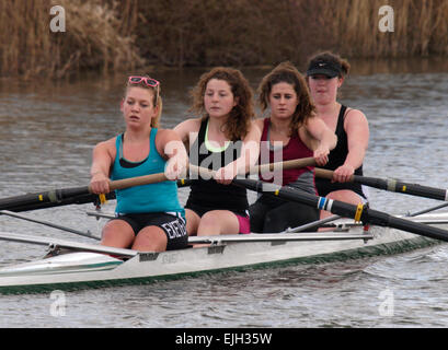A coxless four rowing team from Exeter University in training on the Exeter canal on a cold spring day, Devon, UK - Stock Image