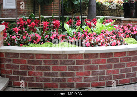 Garden at Phipps Botanical - Stock Image
