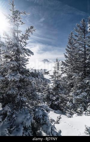 Berglandschaft im Winter am Tegelberg in Süddeutschland, - Stock Image