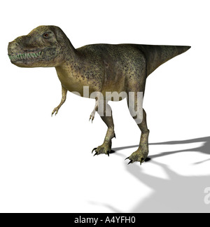 The Tyrannosaurus rex has its name of king of the Tyrannenechsen, in the Cretaceous period lived and a height of - Stock Image