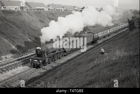 1969, historical, a man sitting on a grassbank by  the railway track, watches as the iconic steam locomotive, The Flying Scotsman', goes past. - Stock Image