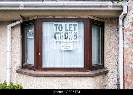 To Let sign in the window of a 5 bedroom house which is available to rent. - Stock Image