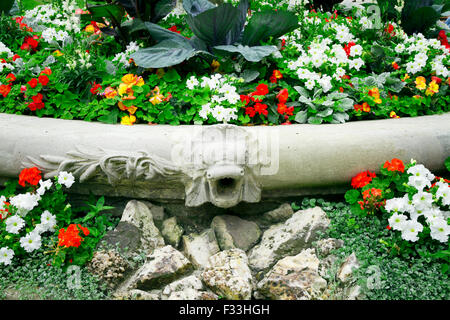 flowers garden vibrant colors - Stock Image