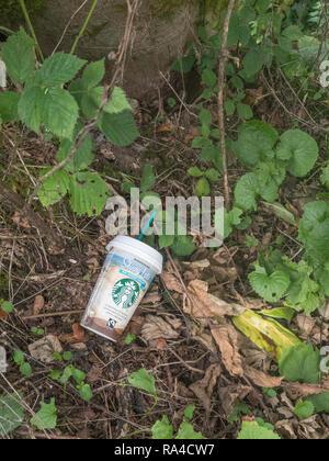 Discarded worn Starbucks plastic coffee cup seen in Cornish roadside hedgerow. Metaphor war on plastic, plastic pollution, polluting the environment. - Stock Image