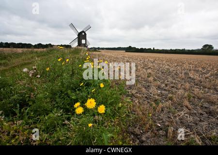 Pitstone Windmill - Stock Image