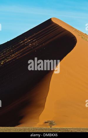 Red Sand Dune, Nabib-Naukluft National Park, Namib Desert, Sossusvlei, Namibia Africa - Stock Image