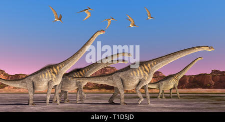 Sauroposeidon Dinosaurs - A flock of Pteranodon reptiles fly over a herd of Sauroposeidon dinosaurs walking together during the Cretaceous Period. - Stock Image