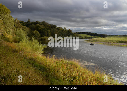 Salmon fishing on the River Tweed on the Ladykirk Estate in the Scottish Borders - Stock Image