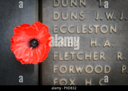 The Roll of Honour at the Canberra War Memorial in Australia - Stock Image