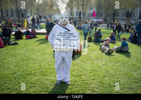 A protestor dressed as a White Rabbit on Parliament Green, Westminster for the Extinction Rebellion demonstration - Stock Image