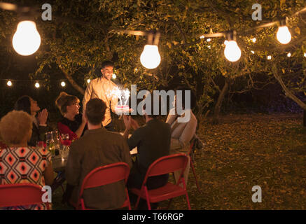 Friends enjoying birthday party with sparkler cake in backyard with fairy lights - Stock Image