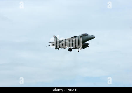 Hawker Siddeley Harrier, cold war Jump Jet, V/STOL - Stock Image