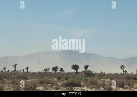 Sandstorm in the Antelope Valley, Mohave Desert, California. Digital photograph - Stock Image