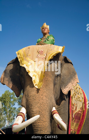 Thailand, Surin, Surin.  Suai mahout and his elephant in costume dress during the Surin Elephant Roundup festival. - Stock Image