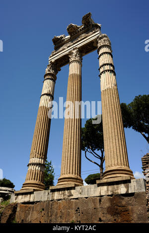 italy, rome, forum of caesar, temple of venus genetrix - Stock Image