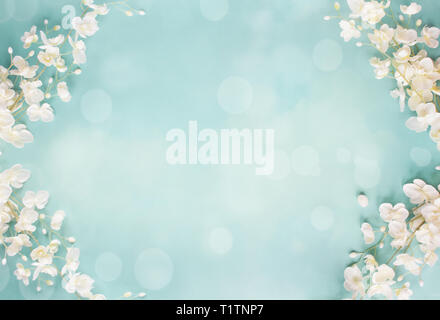 Beautiful and peaceful spring flower blossoms and blurred bokeh against a blue background.Image shot from top view. - Stock Image