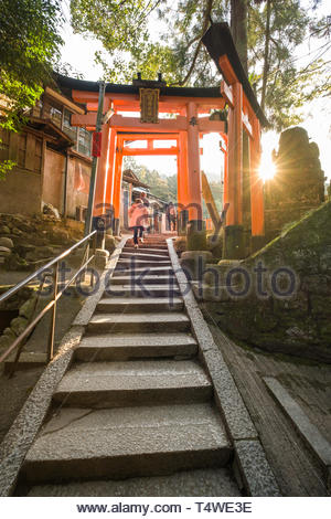 People walking up stone steps beneath traditional Japanese torii gates painted in a vermilion red-orange color that is associated with the soul of Ina - Stock Image