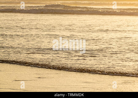 Ocean waves at sunset - Stock Image
