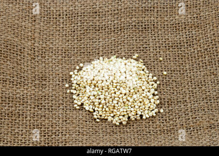 Pile of organic golden (white) quinoa (Chenopodium quinoa) on burlap sack - Stock Image