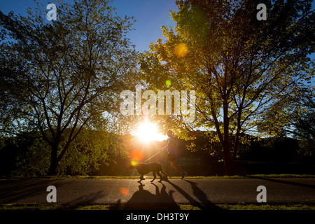 A woman jogging with her dog at sunset. - Stock Image