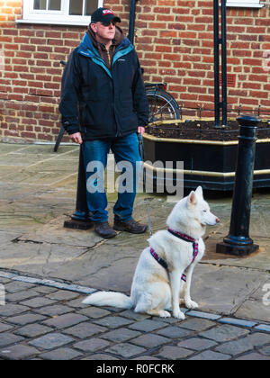 A man with a well behaved white Husky Dog waiting outside a shopping centre - Stock Image