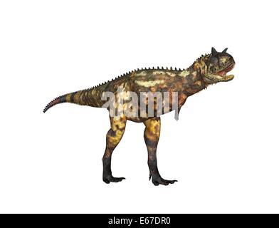 Dinosaurier Carnotaurus / dinosaur Carnotaurus - Stock Image