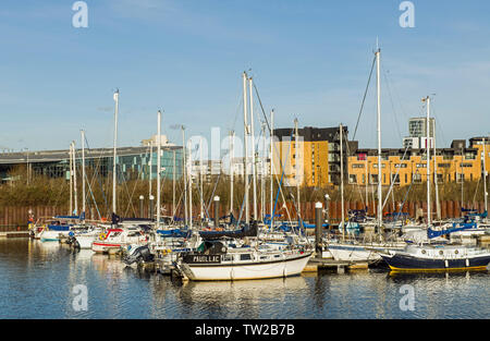 The marina on the River Ely inbetween Cardiff and Penarth with buildings in the background on a cold and sunny winter day in January - Stock Image