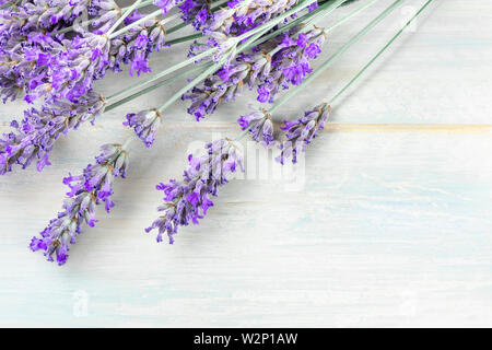 A fresh bouquet of blooming lavender flowers, shot from the top - Stock Image