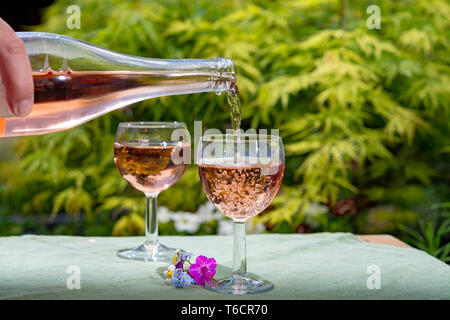 Waiter pouring cold rose wine in glasses in summer sunny day in blossoming garden close up - Stock Image