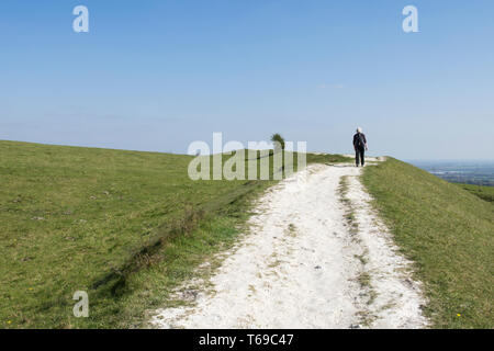 woman walking on path on the Iron-Age hill fort on St. Roche's Hill called the Trundle, Goodwood, Sussex, UK, April,South Downs National Park. - Stock Image