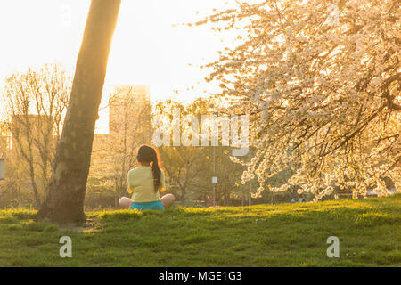 A girl meditates under the blossom of cherry trees in a park in North London - Stock Image