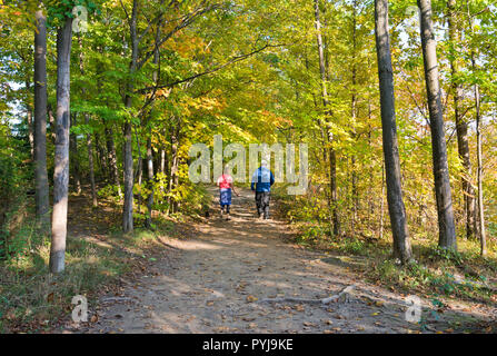 Couple walking through forest path on the Bruce Trail in St. Catharines, Ontario, Canada - Stock Image
