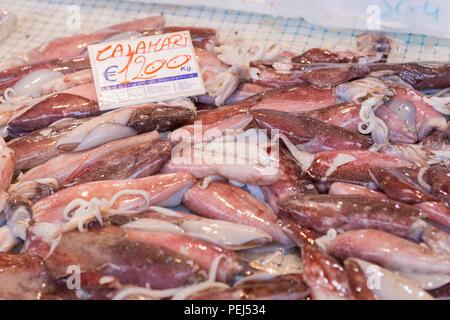 Italy Sicily Syracuse Siracusa Ortygia historic street fresh food & fish market calamari squid €12.00 per Kg - Stock Image