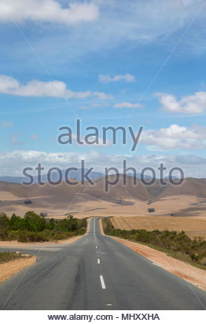 Straight Road Running Through Arid Agricultural Landscape In Western Cape Region Of South Africa - Stock Image