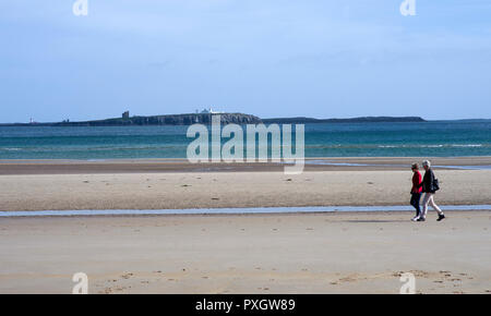 Farne Islands off the Northumberland coast near Seahouses - Stock Image
