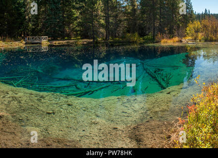 The large spring near Timothy Lake in the Mt. Hood National Forest, Oregon, known as 'Little Crater Lake.' - Stock Image