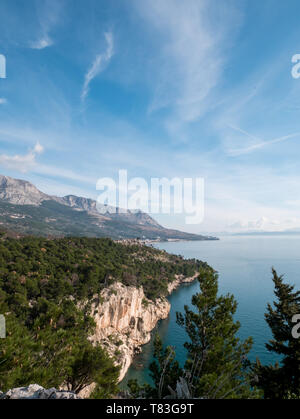 Pine tree forest and calm blue sea landscape on sunny summer day in Croatia - Stock Image