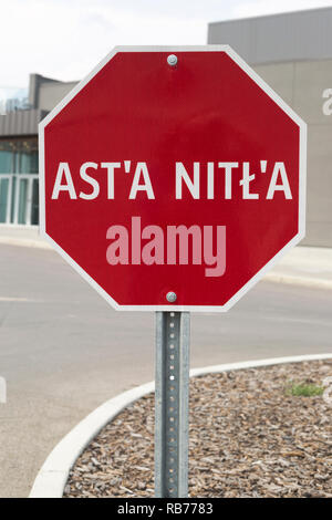 Tsuut'ina indigenous language stop sign in the Grey Eagle Resort and Casino parking lot, Ast'a Nitl'a - Stock Image