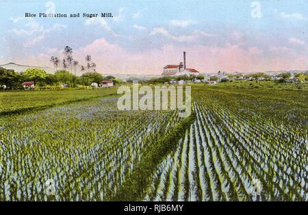 Honolulu, Hawaii, USA - Rice Plantation and Sugar Mill - Stock Image