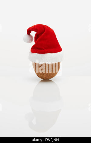 Coconut with Christmas hat - Stock Image