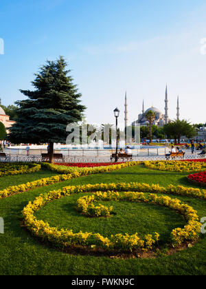 View across yellow and red flower garden in Sultanahment Park to famous Blue Mosque (Sultan Ahmed Mosque) in Istanbul, - Stock Image