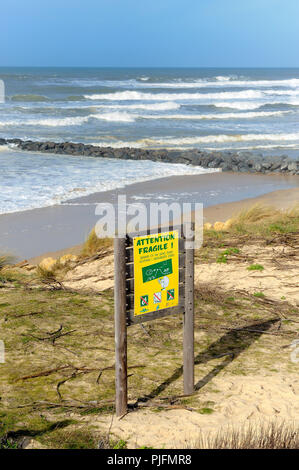 France, South-Western France, Atlantic Ocean, information about dune erosion - Stock Image